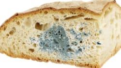 빵을 3개월 신선하게 유지할 수 있는 유일한