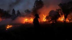 Συνεχίζεται η μάχη με τις φλόγες. Τέσσερα τα επικίνδυνα πύρινα μέτωπα στη