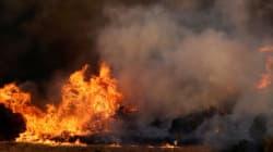 Πύρινα μέτωπα σε Ζάκυνθο, Ιεράπετρα. Υπό έλεγχο οι φωτιές σε Καμένα Βούρλα και