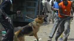 Χωρίς τέλος η ένταση στην Κένυα. Το Λονδίνο συνεχάρη τον