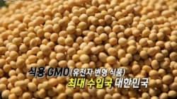 식용 GMO 수입국 1등의