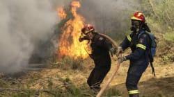 Βελτιωμένη η κατάσταση στα μέτωπα των πυρκαγιών σε Ηλεία και