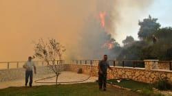 Μαφία εμπρηστών στη Ζάκυνθο; Οι 80 φωτιές, το σχέδιο της ΕΛ.ΑΣ. και οι