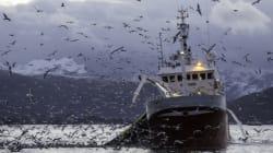 Pêche: les ressources halieutiques fortement menacées par les pratiques illicites et la