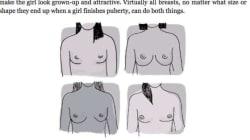 «Τα κορίτσια έχουν στήθη για να είναι ελκυστικά»: Ένα βιβλίο για έφηβα αγόρια προκάλεσε την οργή του
