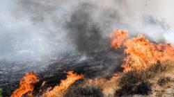 캘리포니아 초대형 산불로 최소 15명 사망 180여명