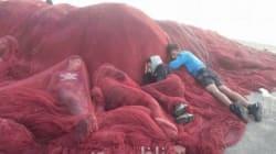 L'AMDH s'inquiète du sort de mineurs marocains squattant le port de Béni