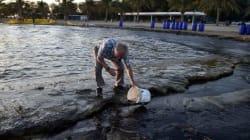 Συναγερμός από την οικολογική καταστροφή. Εντατικές προσπάθειες να καθαρίσουν οι ακτές. Τι καταγγέλλει η