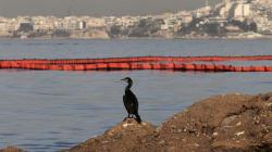 Τουλάχιστον 1.500 κυβικά πετρελαιοειδών έχουν απαντληθεί από το βυθισμένο
