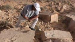 Tataouine: Des traces de pas de dinosaures datant de 140 millions d'années ans ont été