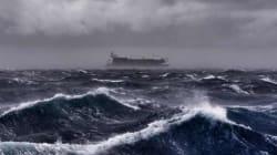 Dangers sur la mer Méditerranée: La WWF tire la sonnette