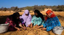 Au Maroc et en Afrique, la Fondation L'Oréal veut croire en l'empowerment féminin