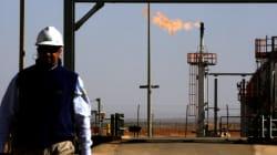 Sonatrach prévoit une recette de plus de 31 milliards USD à fin