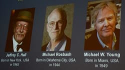 Σε τρεις επιστήμονες από τις ΗΠΑ το Νόμπελ Ιατρικής του