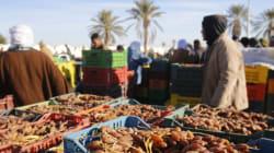 Tunisie: La récolte des dattes 2017-2018 sera un
