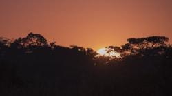 Τα Ηνωμένα Έθνη απέσυραν προσωπικό τους από περιοχές του Μαλάουι εξαιτίας φημών για ύπαρξη
