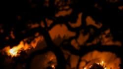 Πάνω από 40 υπολογίζονται οι νεκροί από τις φονικές πυρκαγιές στην