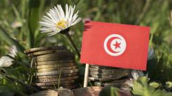 La Tunisie constitue-t-elle encore un terrain propice aux