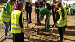 Quand les internautes algériens participent à l'éducation environnementale en