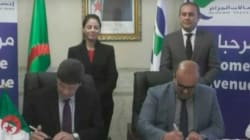 Accord Algérie Télécom-PCCW Global pour la réalisation d'une liaison de fibre