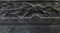 Ανακαλύφθηκαν οι αρχαιότερες απεικονίσεις σκύλων στη Σαουδική