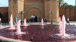 25 novembre: À Rabat, les fontaines ont viré rouge