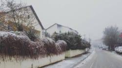 Aïn Draham : les premiers flocons de neige sont tombés (PHOTOS,