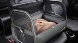 기아차가 출시한 자동차용 반려동물 용품