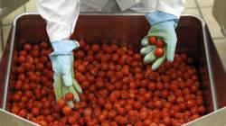 Commerce extérieur: Les acteurs du secteur agricole formés aux nouvelles directives