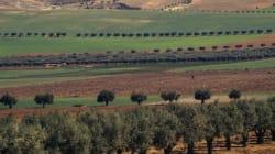 L'agriculture algérienne couvre 70% de la demande nationale