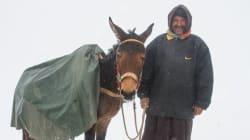 Maroc: Vague de froid, neige dans le désert, trombes marines... un climatologue explique
