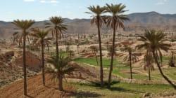 La Tunisie présentera plusieurs projets d'investissements dans le sud tunisien en