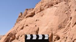 Tozeur: la rencontre internationale du cinéma des jeunes