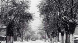 Tiaret : les chutes de neige entravent la circulation