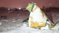 Le crash d'un avion de ligne russe près de Moscou fait 71