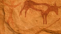 Ghardaïa: découvertes de trois gisements d'art rupestre à