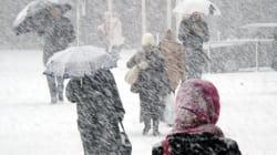 Le froid sybérien fait 50 morts en