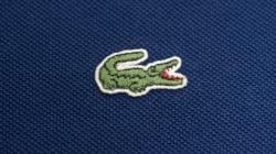 Lacoste abandonne son iconique logo de crocodile (pour un temps