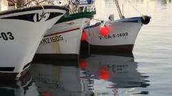 L'Espagne dit poursuivre normalement la pêche au Maroc (du moins pour