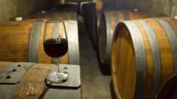 Le reportage de The Independent sur le chemin des vins en Tunisie ou quand le savoir-faire rime avec