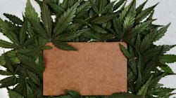 Plus de 52 tonnes de résine de cannabis saisies durant l'année 2017 en