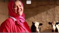 Rachida Gharbi, éleveuse de bovins à Sidi Bouzid ou quand la persévérance porte ses fruits