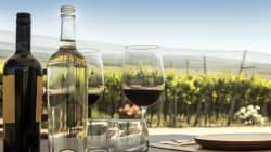 La route du vin: Le nouvel itinéraire touristique qui traverse la