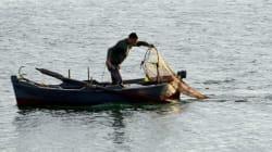 Plus de 100 constructions illégales sur la plage de Ghar El Melh à Bizerte. Le patrimoine andalous agricole en