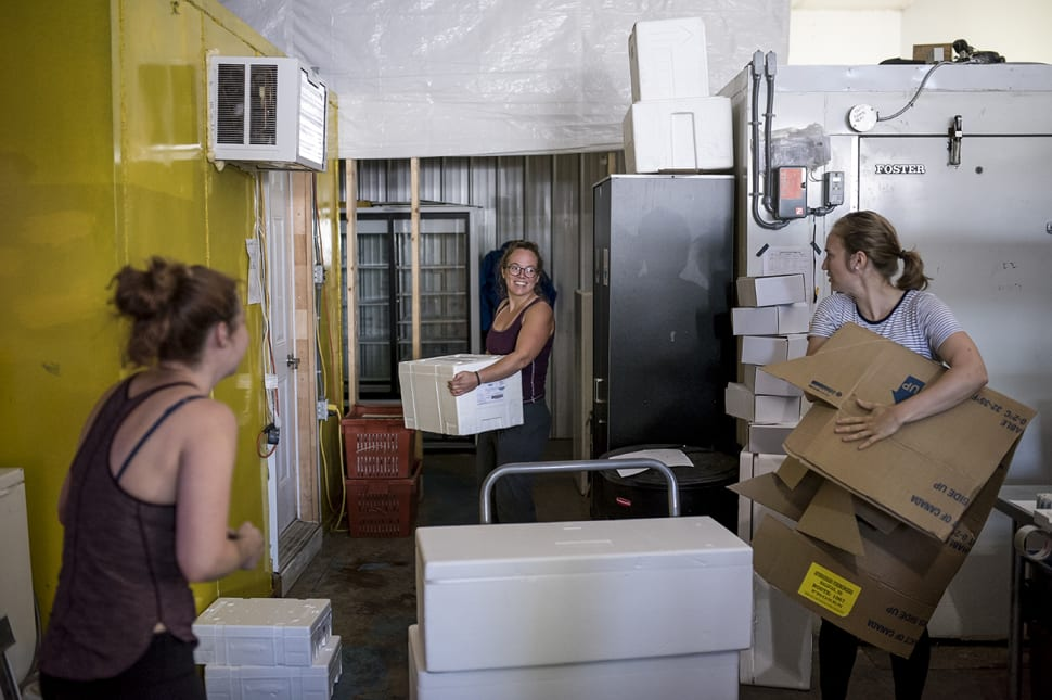 Laurie Starr, centre, laughs while packing and receiving orders with Mikaila Bickford, left, and Hana...