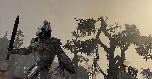 Choose My Adventure: Approaching level 10 in The Elder Scrolls Online