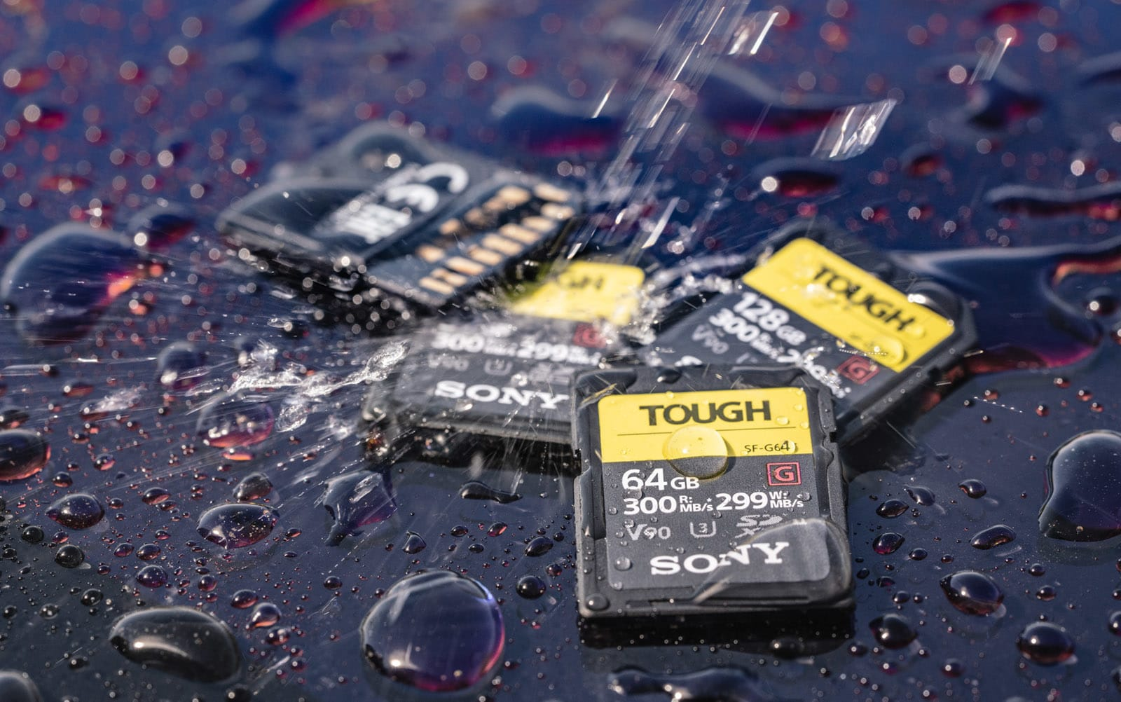 a2b9e30c62a Sony s ultra-fast SD cards are designed to be abused