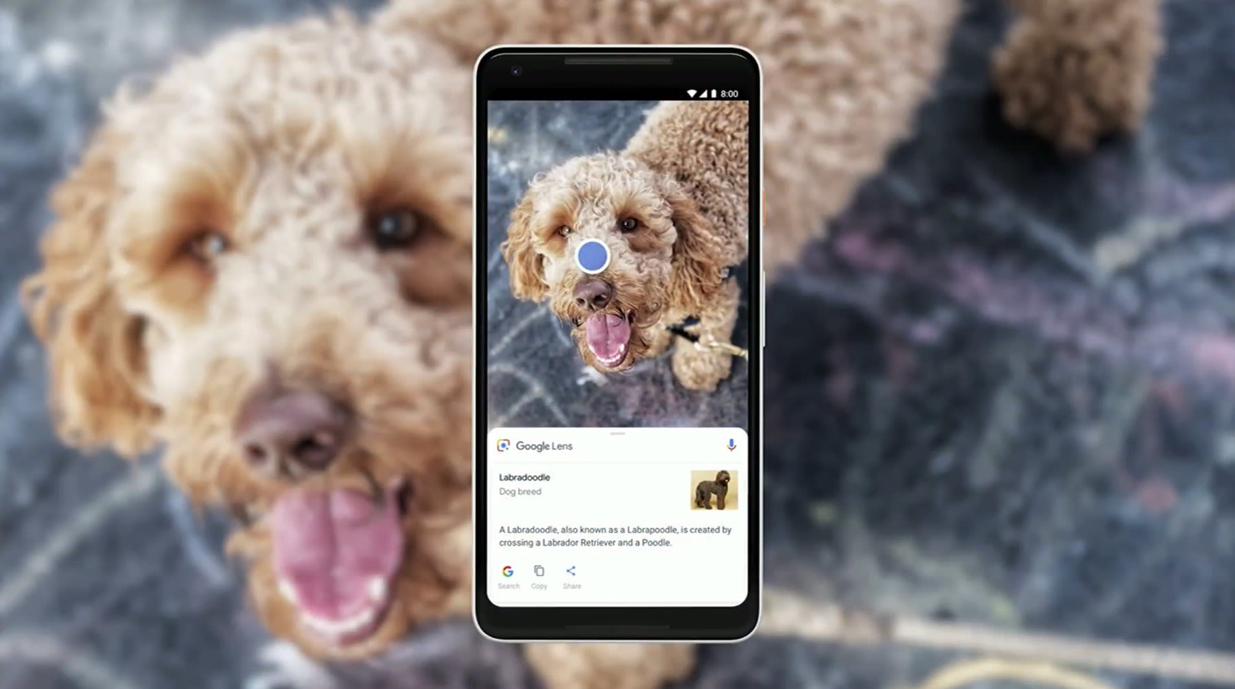 Google Lens will be available in stock camera apps