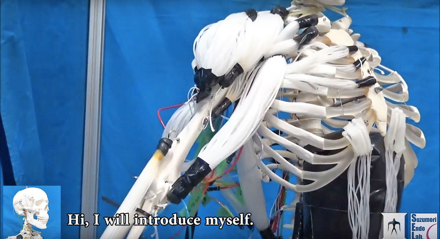 Researchers Create Skeleton Robot With Human Like Muscles