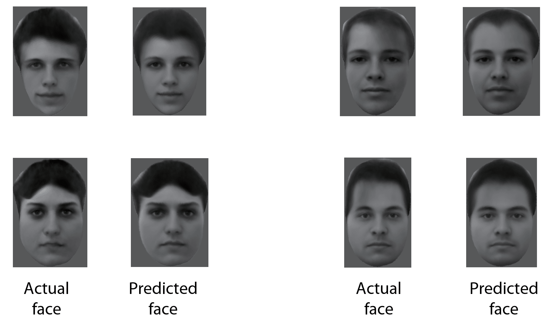 Scientists now know how your brain differentiates faces